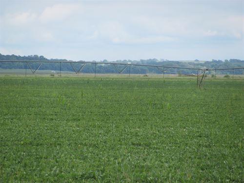 Modale 80 Row Crop With Pivot : Modale : Harrison County : Iowa