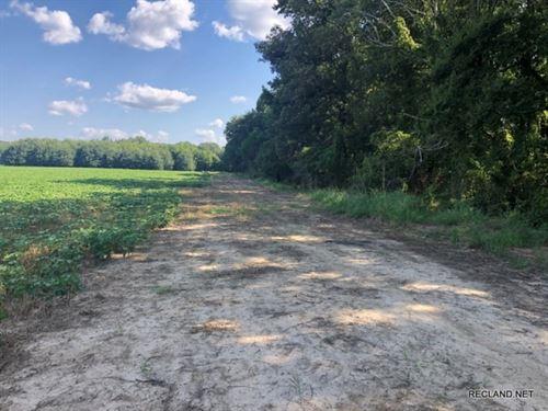 415 Ac, Irrigated Farm : Crowville : Franklin Parish : Louisiana