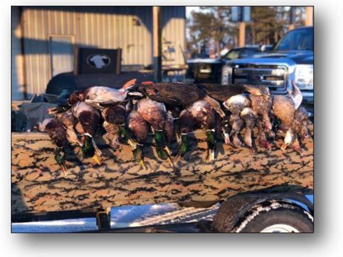 115.52 Acres In Craighead County In : Buffalo City : Craighead County : Arkansas