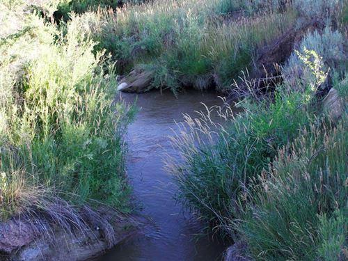 No Covenants in Cortez, Colorado : Cortez : Montezuma County : Colorado