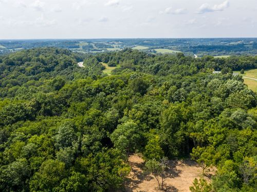 89.65 Acres Santa Fe Tn/Maury CO : Santa Fe : Maury County : Tennessee
