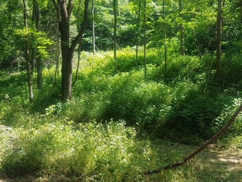 Mountain Farmland Shawsville VA : Shawsville : Montgomery County : Virginia