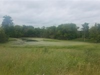 Vacant Land Waupaca, Wi, Englewood : Waupaca : Wisconsin
