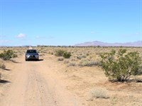 Awesome & Affordable, Ag/Res Land : Newberry Springs : San Bernardino County : California