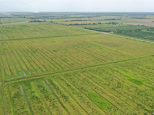 Shinn And Okeechobee Acreage : Fort Pierce : Saint Lucie County : Florida
