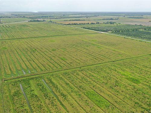 Shinn And Okeechobee Acreage : Fort Pierce : Saint Lucie County : Florida