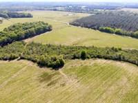 Cr27 L-Pond Rd Row Crop Farm Land : Castleberry : Covington County : Alabama