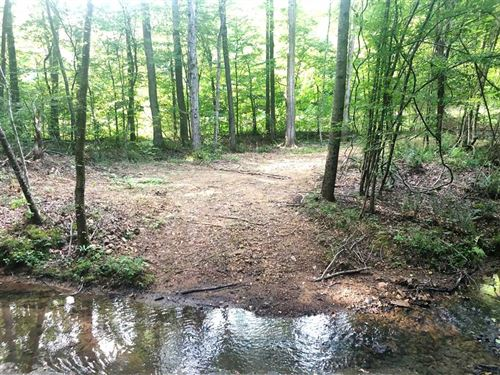 Reduced, 180 Acres Southern Wayne : Iron City : Wayne County : Tennessee