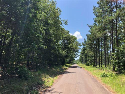 Cass County Timberland, Country : Atlanta : Cass County : Texas