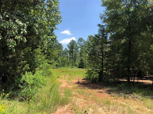 Timberland, Country Homesite, East : Atlanta : Cass County : Texas