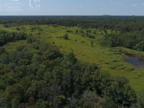 Stunning Recreational Land Adams : Friendship : Adams County : Wisconsin