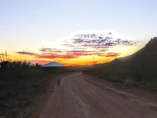20 Acres Only $99 Dn, $110/Mo : Sierra Blanca : Hudspeth County : Texas
