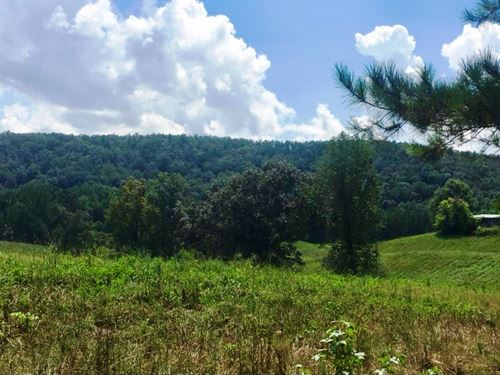 80 Acres W/Good Timber And Creek : Ashland : Clay County : Alabama