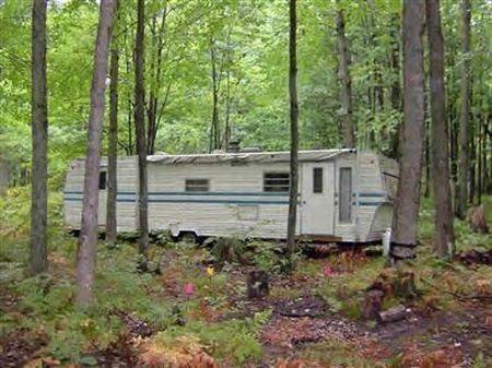 Rustic Hunt Camp : Baldwin : Lake County : Michigan