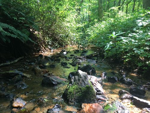 16.22 Acres Boarding Preserve : Landrum : Greenville County : South Carolina