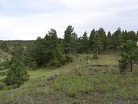 Awesome 5Ac Treed Cabin Lot +A12-27 : Weston : Las Animas County : Colorado