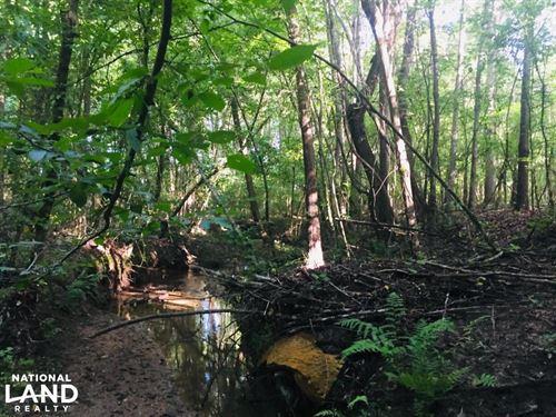 Old Metal Road Hunting, Recreation : Gaffney : Cherokee County : South Carolina
