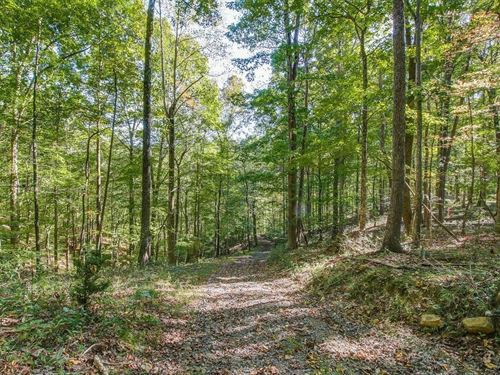 Private Hilltop Land in Franklin : Franklin : Williamson County : Tennessee