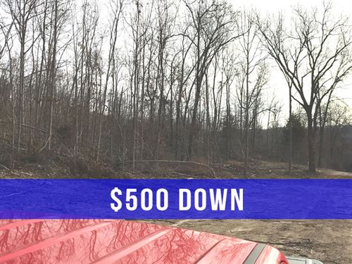 $500 Down On 24 Acres For Hunting : Ava : Douglas County : Missouri