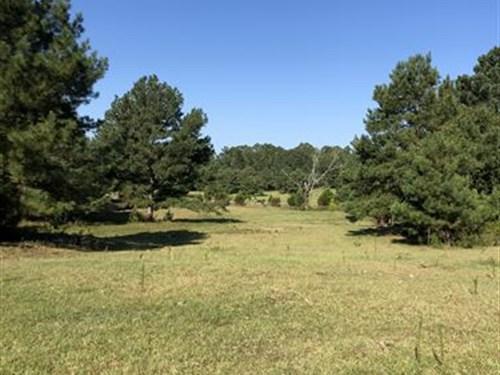 21+/- Acres Pasture/Timber : Alpine : Talladega County : Alabama