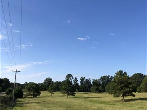 35+/- Acres Pasture / Timberland : Alpine : Talladega County : Alabama