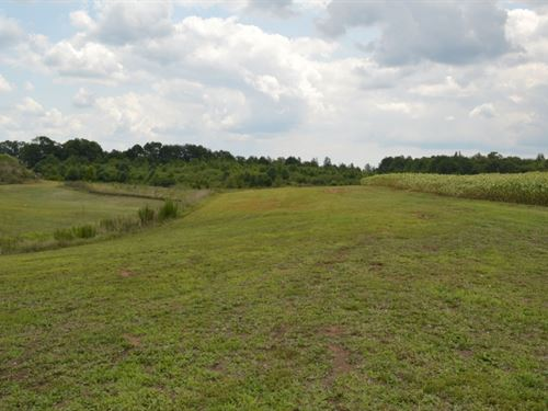 12.59 Level Acres On Welpine Roa : Pendleton : Anderson County : South Carolina