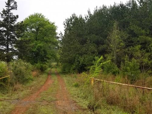 Olin C Lease Tract, Sabine Parish : Converse : Sabine Parish : Louisiana