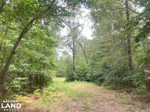 Fayetteville 10 Ac Homestead : Fayetteville : Cumberland County : North Carolina