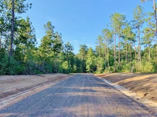 20.21 Acre Residential Development : Sumrall : Lamar County : Mississippi