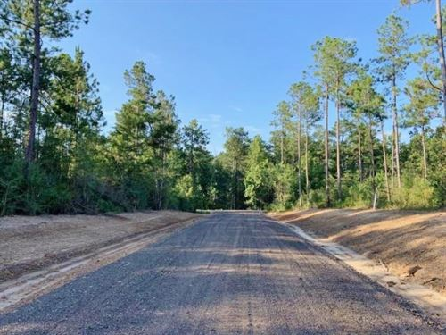 21.105 Acre Residential Development : Sumrall : Lamar County : Mississippi