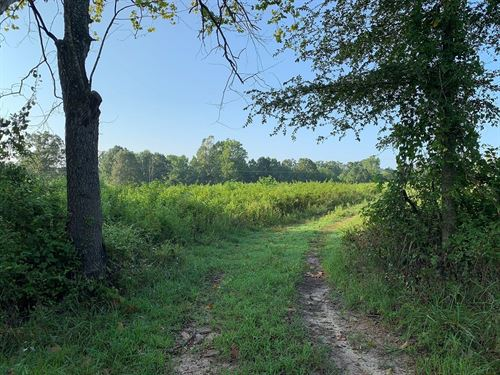 105 Acres For Sale In Franklin, AR : Franklin : Izard County : Arkansas