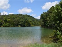 Gated Community Lakefront : Bean Station : Grainger County : Tennessee