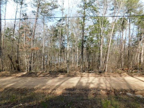1Ac Land Near The TN River : Clifton : Wayne County : Tennessee