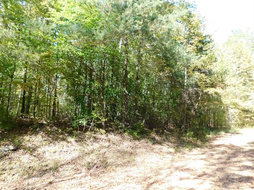 Land to Build on For Sale : Morris Chapel : Hardin County : Tennessee