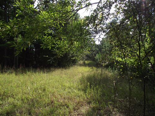 Land Pickwick Ready To Build : Savannah : Hardin County : Tennessee
