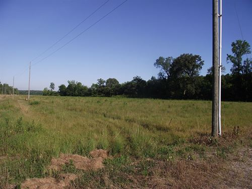 Tennessee Land For Sale With Creek : Selmer : McNairy County : Tennessee