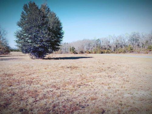 1 Acre Lot : Odum : Wayne County : Georgia