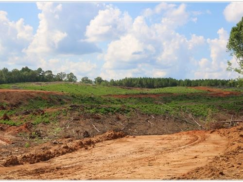 124.56 Acres In Attala County In Et : Ethel : Attala County : Mississippi