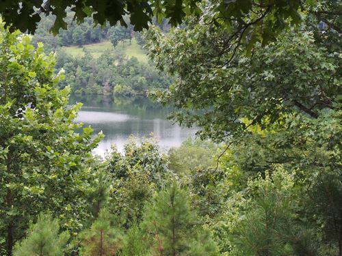 Beautiful Tract Overlooking Bull : Yellville : Marion County : Arkansas
