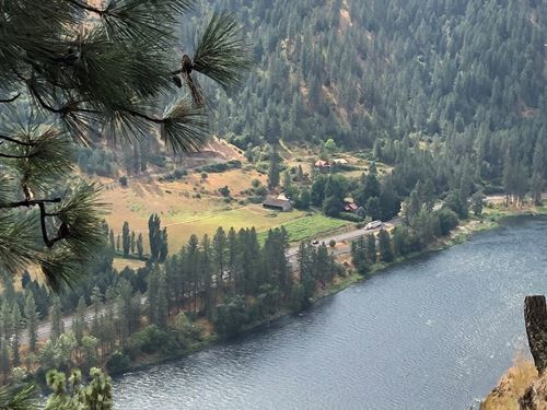 Wooded Seclusion Above Clearwater : Lenore : Clearwater County : Idaho