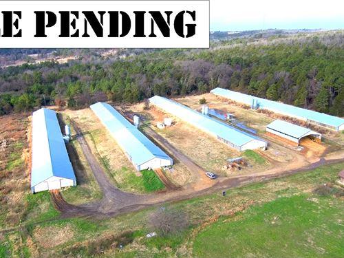 Arkansas Poultry Farm, 4 Broiler : Booneville : Logan County : Arkansas