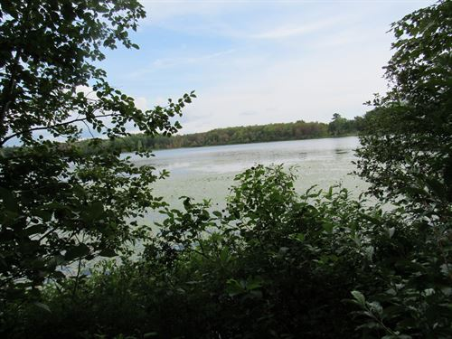 Great Property On Chief Lake : Kaleva : Manistee County : Michigan