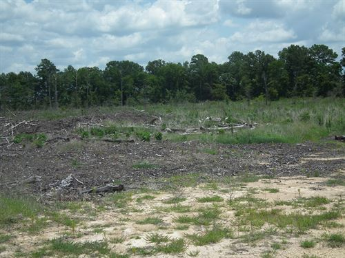 Measel Road 77.21, Scott County : Leesburg : Scott County : Mississippi
