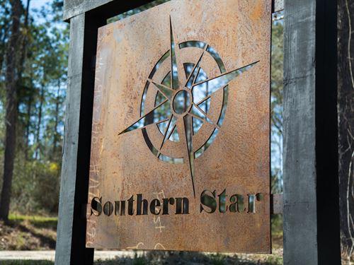 16 Acres Southern Star T-1 : Corrigan : Polk County : Texas