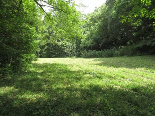 88Ac, Creek, Building Sites, Timber : Celina : Clay County : Tennessee