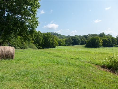 116 Acre Family Farm : Columbia : Maury County : Tennessee