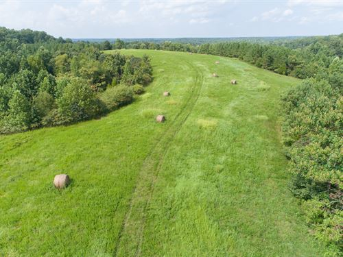 Excellent 135 Acre Hunting Property : Williamsport : Hickman County : Tennessee