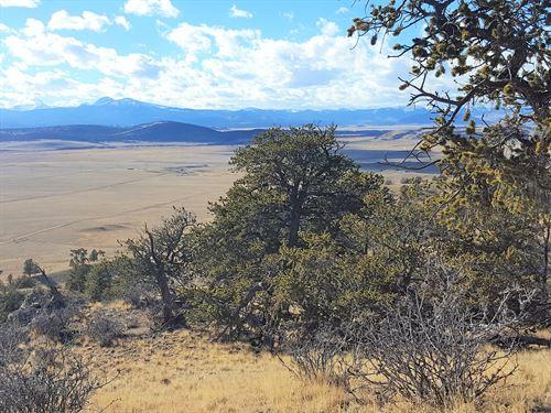 35 Acres Of Co Mountain Property : Hartsel : Park County : Colorado