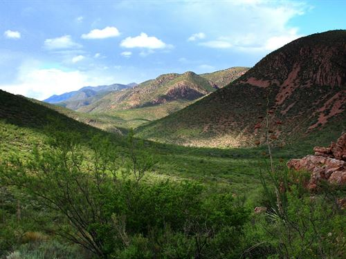 Beautiful West, Horses Ok, $125/Mo : Douglas : Cochise County : Arizona