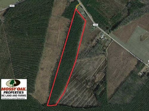 Reduced, 38 Acres of Hunting And : Gates : North Carolina